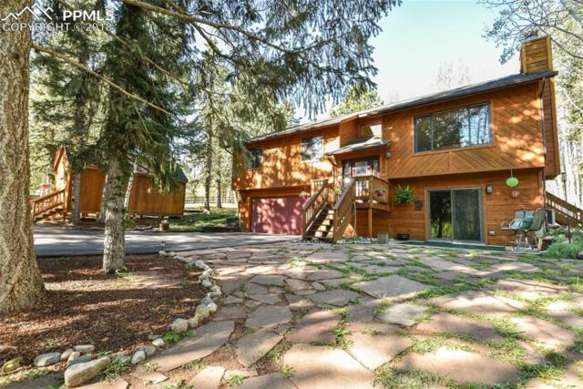200 Bridle Drive, Woodland Park, CO 80863 (#4112556) :: 8z Real Estate