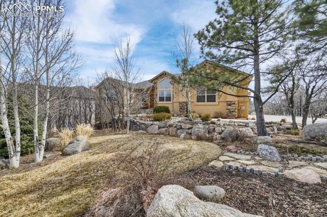 155 Balmoral Way, Colorado Springs, CO 80906 (#4130473) :: Harling Real Estate