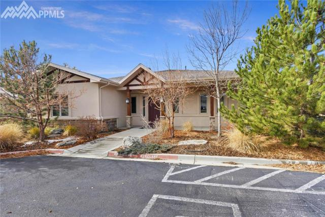 255 Jefferson Street, Monument, CO 80132 (#4156680) :: Action Team Realty
