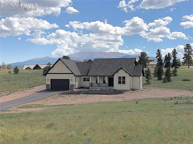 107 Samantha Way, Divide, CO 80814 (#4185911) :: 8z Real Estate