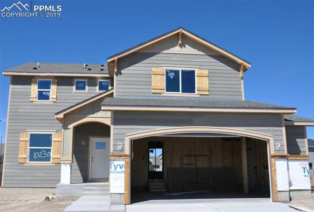 10230 Ravenclaw Drive, Colorado Springs, CO 80924 (#4215453) :: Action Team Realty