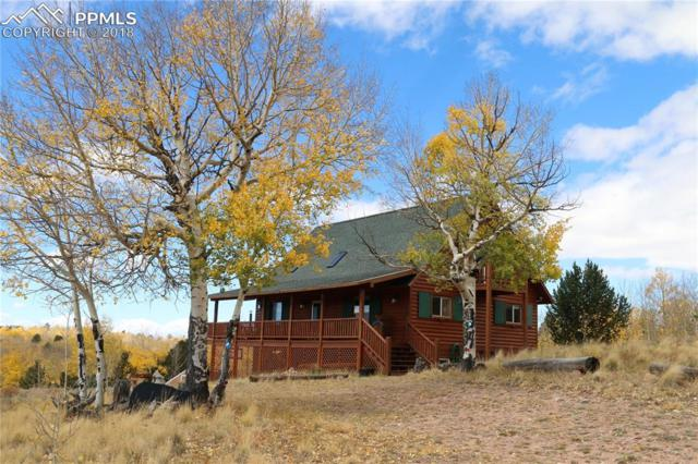 2772 County 863 Road, Victor, CO 80860 (#4250777) :: 8z Real Estate