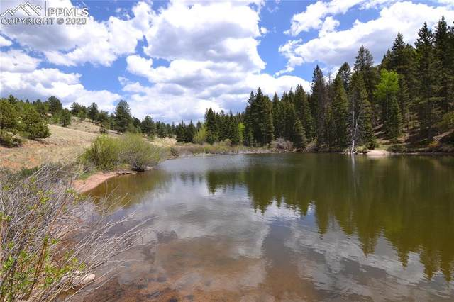 4195 Cedar Mountain Road, Divide, CO 80814 (#4253483) :: 8z Real Estate