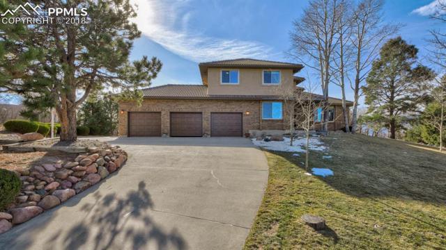 15018 La Jolla Place, Colorado Springs, CO 80921 (#4257115) :: Harling Real Estate