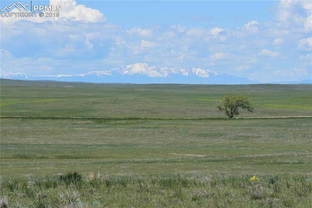 20100 County 161 Road, Matheson, CO 80830 (#4272116) :: The Treasure Davis Team