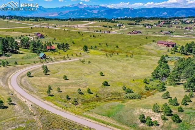 3681 Blue Heron Spring Lane, Colorado Springs, CO 80908 (#4309308) :: Tommy Daly Home Team