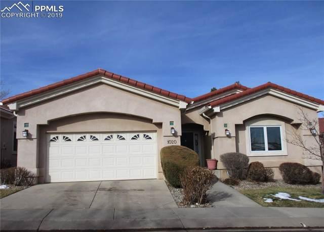 1020 Serabella Grove, Colorado Springs, CO 80906 (#4379054) :: Action Team Realty