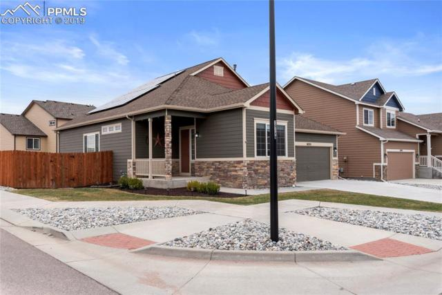 6255 Dancing Star Way, Colorado Springs, CO 80911 (#4428516) :: Tommy Daly Home Team