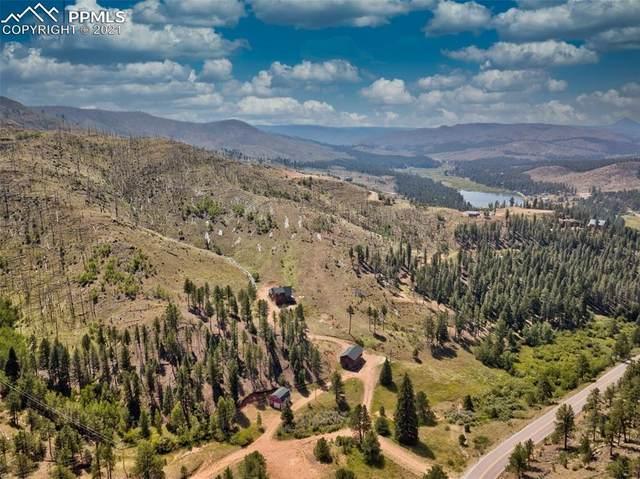14003 S Highway 67, Woodland Park, CO 80863 (#4458675) :: 8z Real Estate