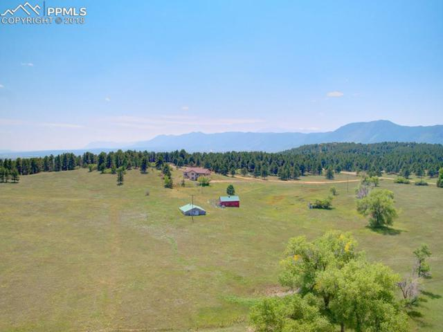 20285 Indi Drive, Monument, CO 80132 (#4532493) :: Action Team Realty