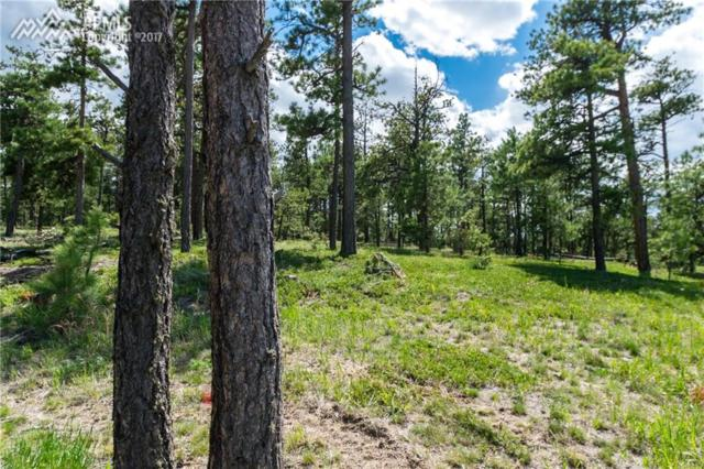 19325 Hilltop Pines Path, Monument, CO 80132 (#4577628) :: 8z Real Estate