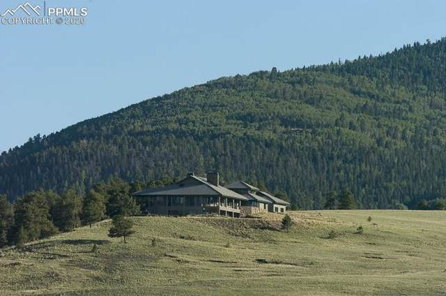 5681 County Road 59, Florissant, CO 80820 (#4594672) :: 8z Real Estate