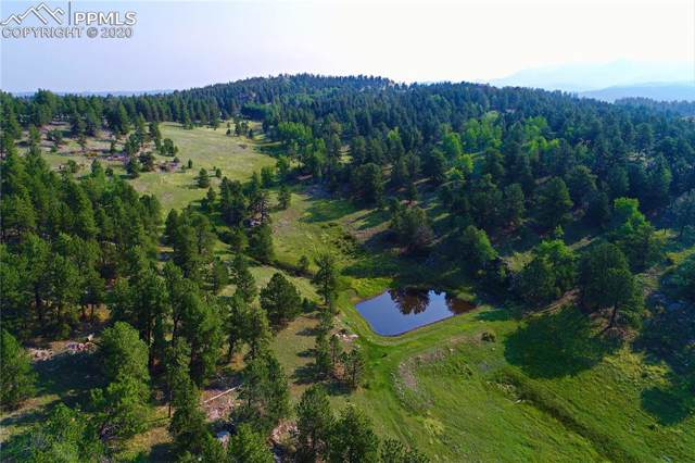 TBD Teller 1 Road, Cripple Creek, CO 80813 (#4597088) :: 8z Real Estate