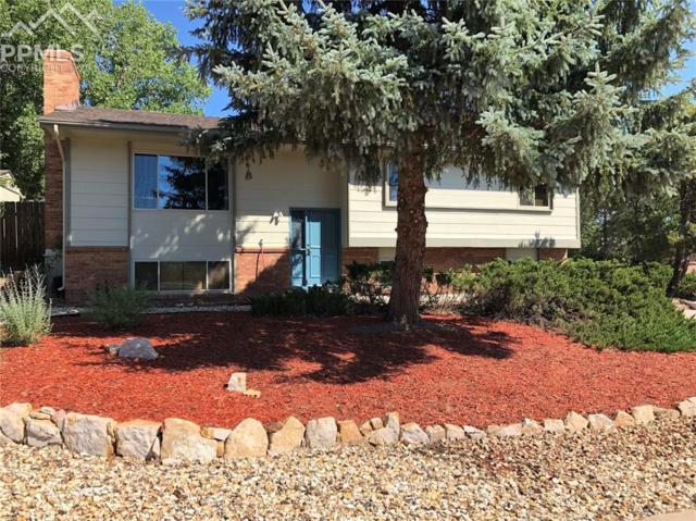 350 E Rockrimmon Drive, Colorado Springs, CO 80919 (#4635193) :: The Peak Properties Group