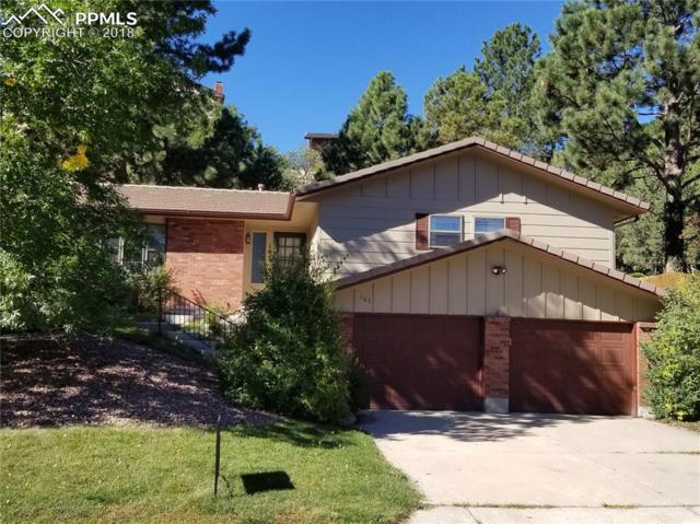 185 Raven Hills Road, Colorado Springs, CO 80919 (#4687527) :: Jason Daniels & Associates at RE/MAX Millennium