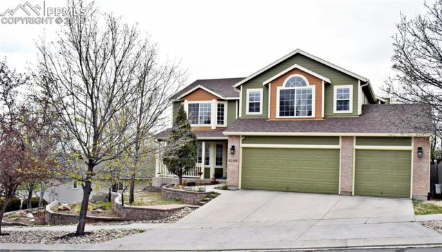 5230 Whip Trail, Colorado Springs, CO 80917 (#4728555) :: Tommy Daly Home Team