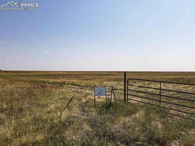 Lot 6 Highway 94, Rush, CO 80864 (#4756086) :: Action Team Realty