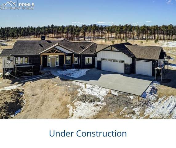 14894 Snowy Pine Point, Colorado Springs, CO 80908 (#4771469) :: The Dixon Group