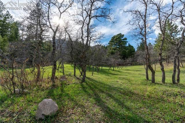 4790 Broadlake View, Colorado Springs, CO 80906 (#4773234) :: The Treasure Davis Team | eXp Realty