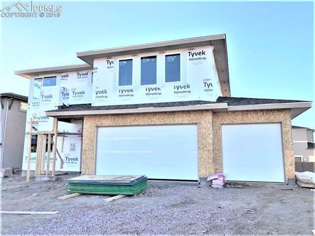 11950 Red Bullet Lane, Colorado Springs, CO 80921 (#4811746) :: 8z Real Estate