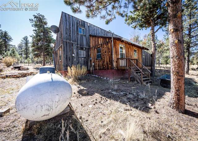 7600 Doe Valley Road, Guffey, CO 80820 (#4814579) :: The Daniels Team