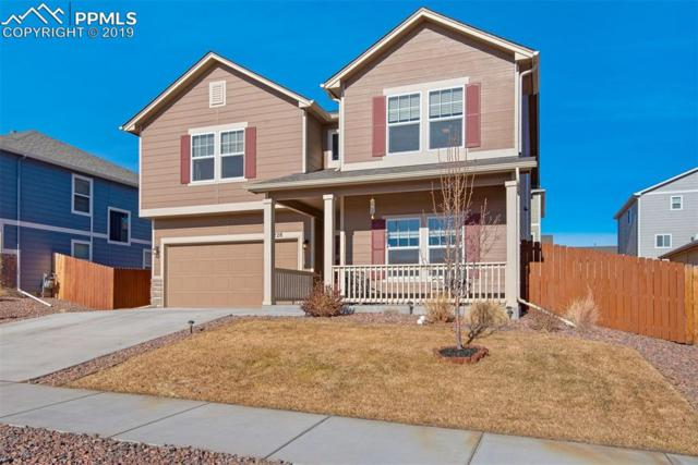 7228 Cat Tail Creek Drive, Colorado Springs, CO 80923 (#4838255) :: The Daniels Team