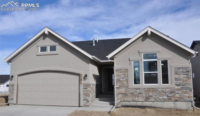 2591 Grand Prix Court, Colorado Springs, CO 80922 (#4856989) :: The Daniels Team