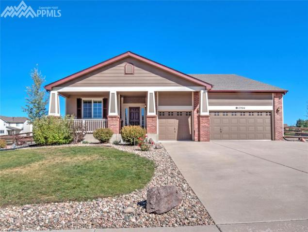 17504 Water Flume Way, Monument, CO 80132 (#4958137) :: 8z Real Estate