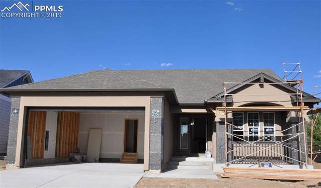 6055 Trappers Tale Court, Colorado Springs, CO 80923 (#5000584) :: Action Team Realty