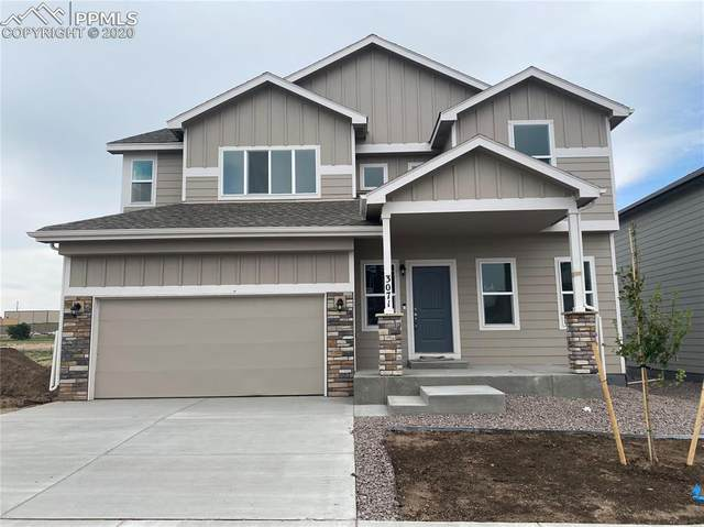 3071 Namib Drive, Colorado Springs, CO 80939 (#5031930) :: Tommy Daly Home Team