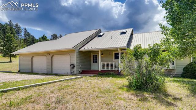 205 Sun Ridge Court, Woodland Park, CO 80863 (#5038202) :: 8z Real Estate