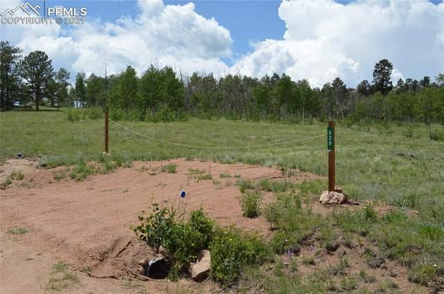 491/529 Hidden Valley Road, Florissant, CO 80816 (#5048908) :: Compass Colorado Realty