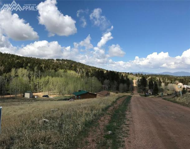 L114 Friar Tuck Drive, Divide, CO 80814 (#5166170) :: Harling Real Estate