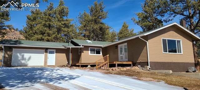 10287 County Road 11, Florissant, CO 80816 (#5210947) :: The Daniels Team