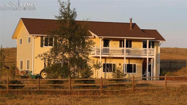5454 Bestwood Drive, Larkspur, CO 80118 (#5304995) :: 8z Real Estate