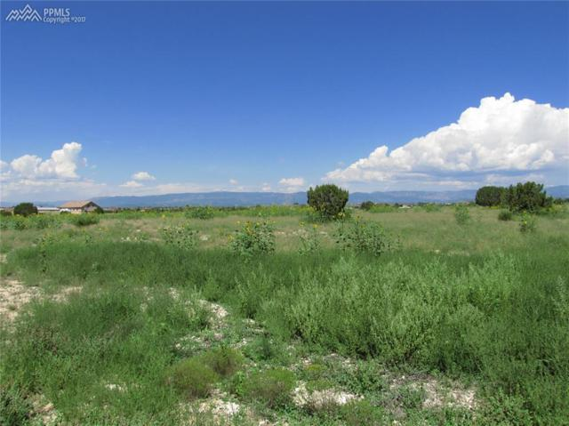 1316 Top Notch Trail, Penrose, CO 81240 (#5307437) :: Jason Daniels & Associates at RE/MAX Millennium