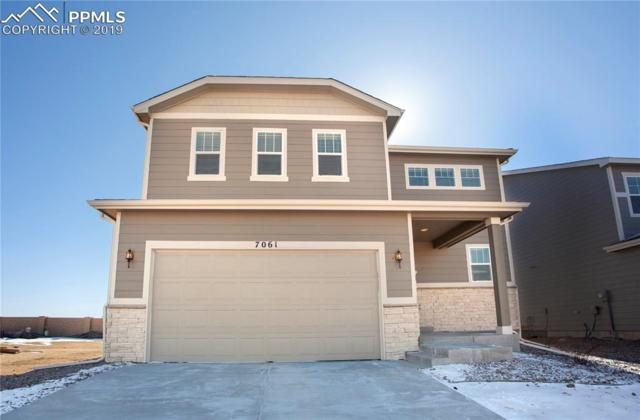 7061 Boreal Drive, Colorado Springs, CO 80915 (#5347528) :: 8z Real Estate