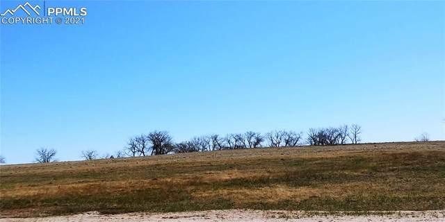 7139 Wrangler Ranch View, Peyton, CO 80831 (#5378933) :: The Daniels Team