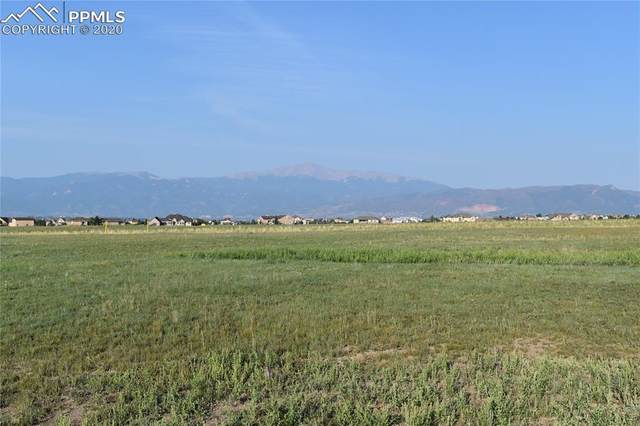 7885 Rannoch Moor Way, Colorado Springs, CO 80908 (#5407719) :: 8z Real Estate
