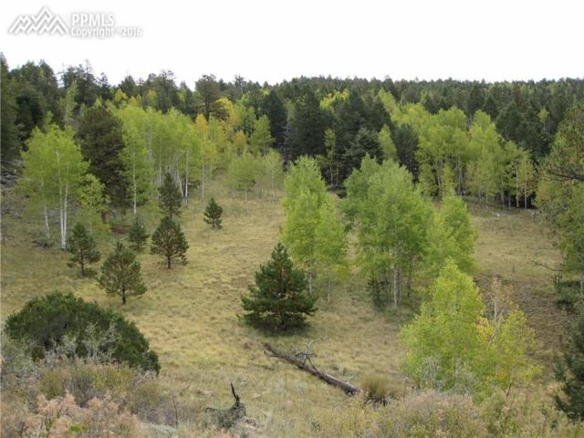 Unknown Unknown, Cripple Creek, CO 80813 (#5409414) :: 8z Real Estate