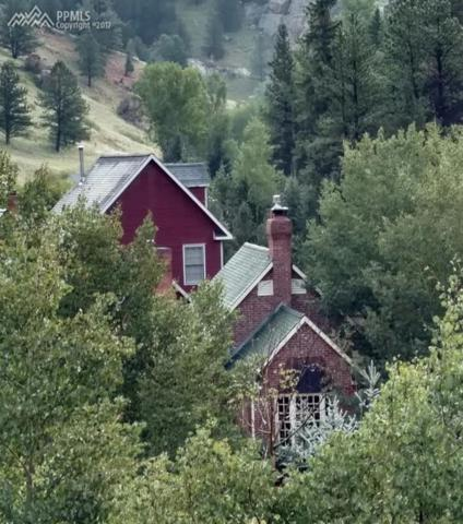 6250 County 61 Road, Divide, CO 80814 (#5432191) :: 8z Real Estate