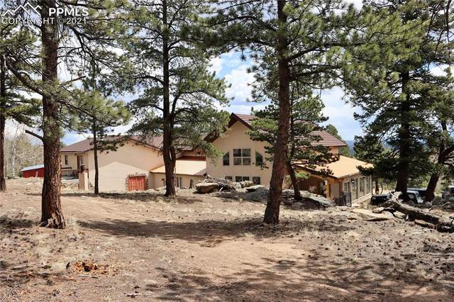 1600 Pulver Road, Lake George, CO 80827 (#5452240) :: Tommy Daly Home Team