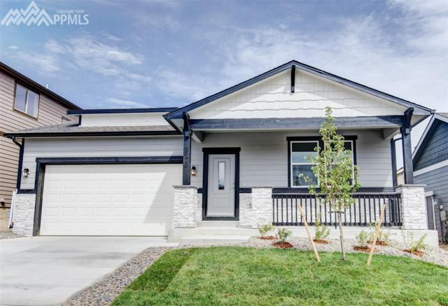 7804 Pinfeather Drive, Fountain, CO 80817 (#5500817) :: 8z Real Estate