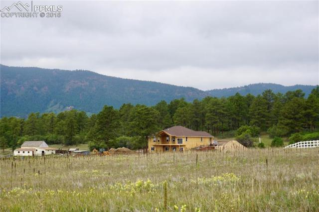 601 Pioneer Haven Point, Palmer Lake, CO 80133 (#5530123) :: Colorado Home Finder Realty