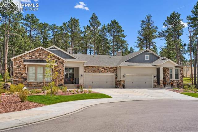 16351 Woodward Terrace, Monument, CO 80132 (#5539715) :: Action Team Realty