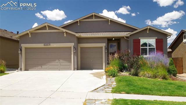8118 Mount Huron Trail, Colorado Springs, CO 80924 (#5597455) :: Tommy Daly Home Team