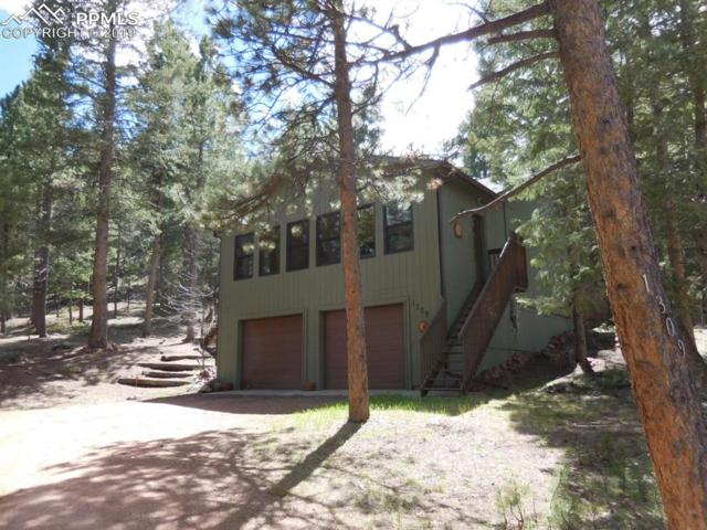 1309 W Browning Avenue, Woodland Park, CO 80863 (#5681628) :: The Daniels Team
