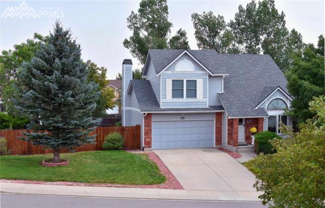 8361 Turkey Run Drive, Colorado Springs, CO 80920 (#5754637) :: 8z Real Estate