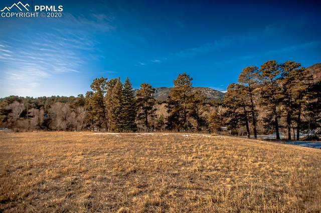 Brook Street, Palmer Lake, CO 80133 (#5831889) :: Action Team Realty