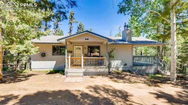 51 Aspen Circle, Divide, CO 80814 (#5834226) :: Action Team Realty